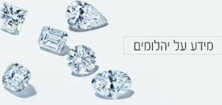 מידע על יהלומים