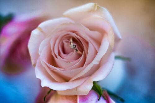 בוחרים את טבעת האירוסין בקצב שלכם